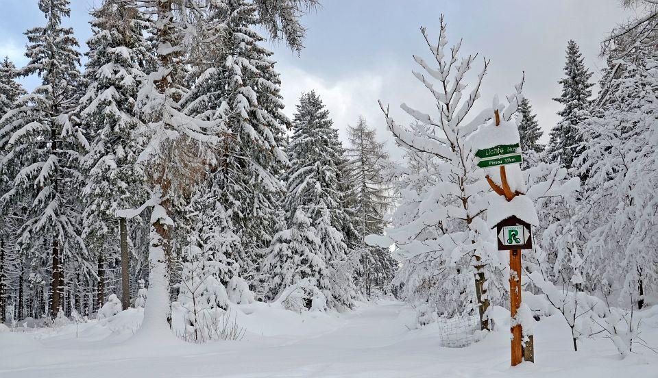 Waldstueble in Ernstthal - Bildergallerie Umgebung im Winter